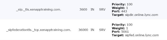 Skype for Business DNS Settings
