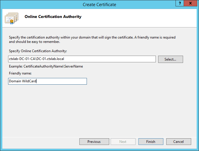 Create Wildcard Domain Certificate StoreFront Select CA